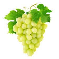 Grape concentrate 1L